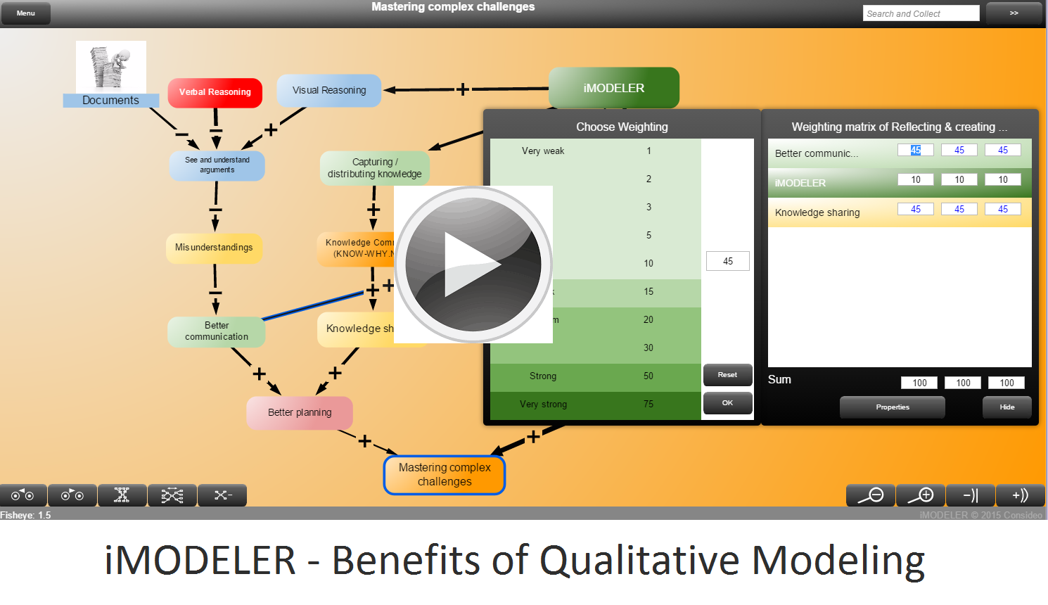 iMODELER - Benefits of Qualitative Modeling